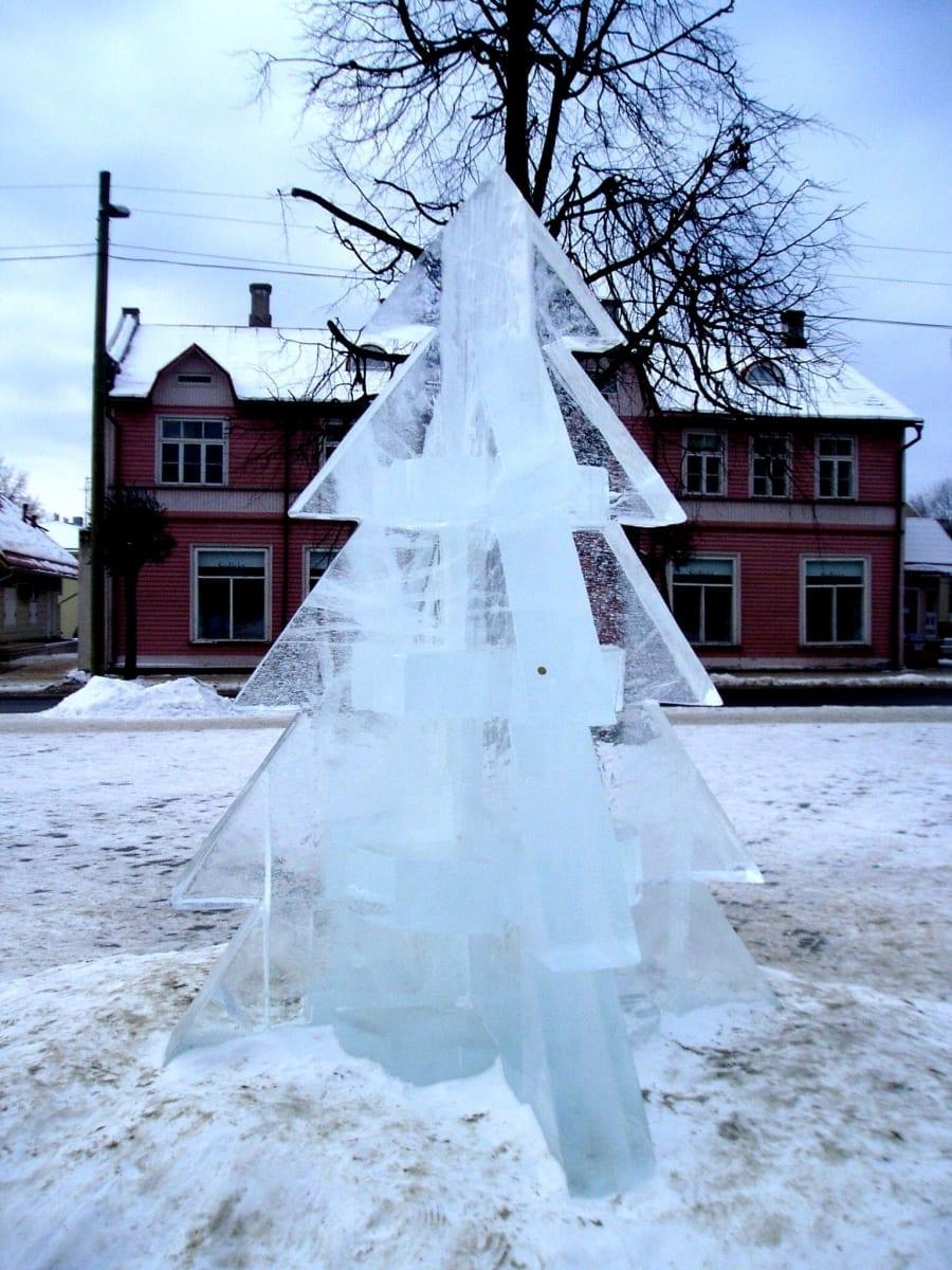 """""""KUUSK"""" 2007 h= 2 m Võru, Eesti <br/> """"SPRUCE"""" 2007 h= 2 m Võru, Estonia"""
