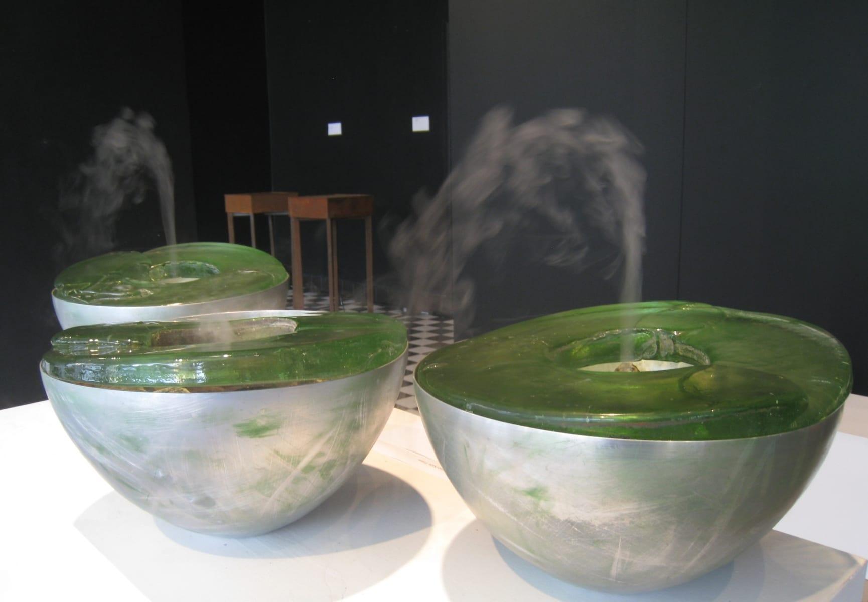 """""""SOO"""" 2008 klaas, metall, kivid,veeaur <br/>""""SWAMP"""" 2008 glass,metal,stones,water steam"""