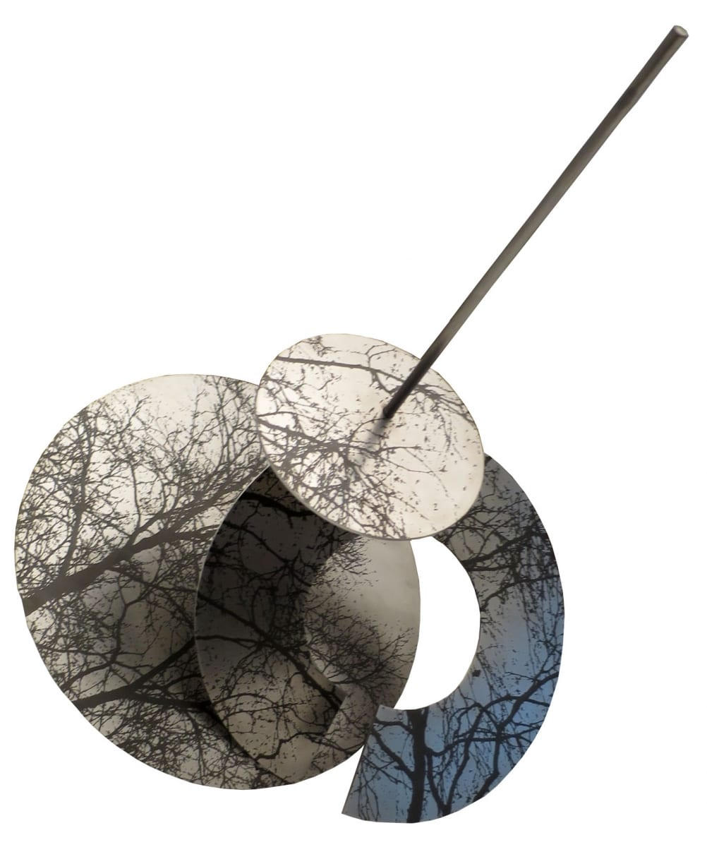 """RAAGUS I"" 2016 lasergravering roostevabal terasel <br/> ""TREMBLED TREES I"" 2016 lazer engraving on stainless steel"