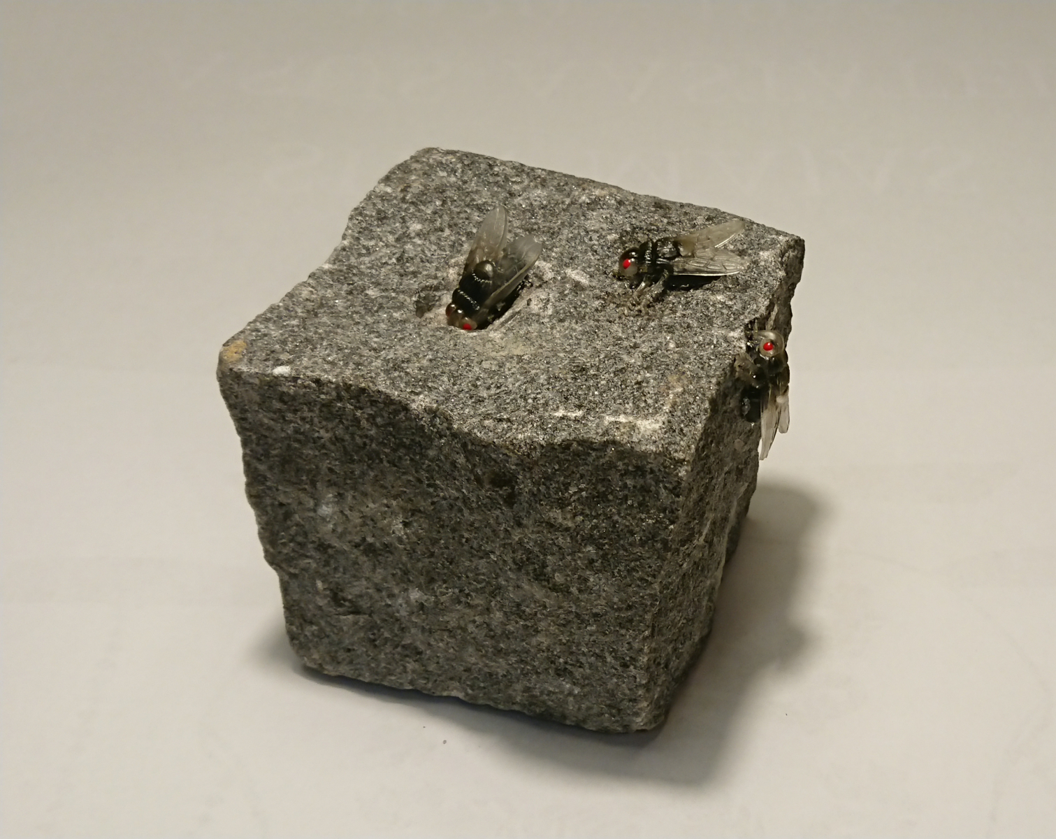"""UUDISHIMU"" 2019 graniit,plastik<br/> ""CURIOSITY"" 2019 granit,plastic"